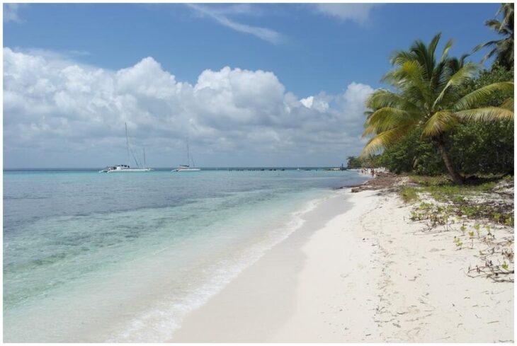 Isla Saona in the Dominican Republic