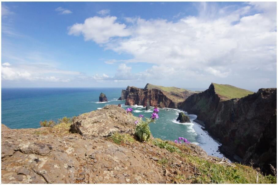 Madeira 705 Ponta de São Lourenço